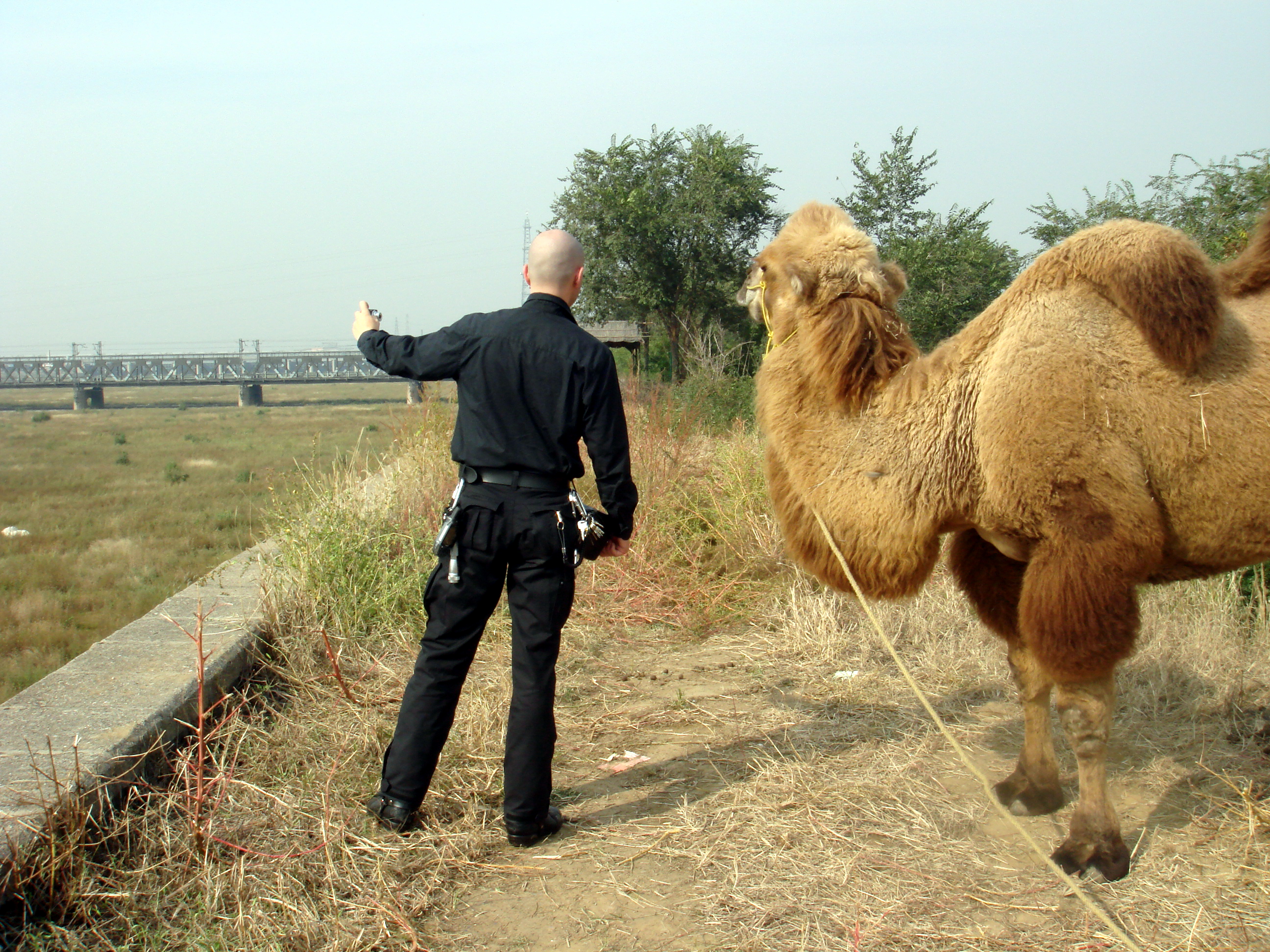 qu_mark_benecke_and_his_friend_the_camel_in_china